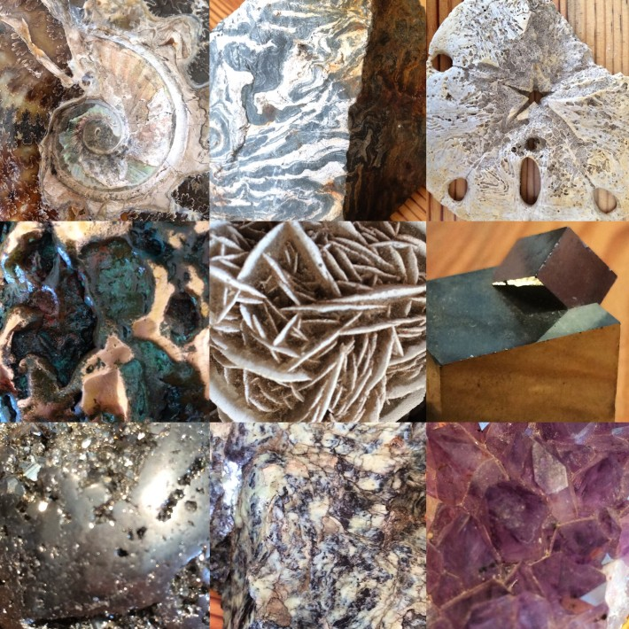 Rocks, minerals, and fossils from David Lawler's lecture during the Fall 2015 Education Program; photos: Jackie von Treskow